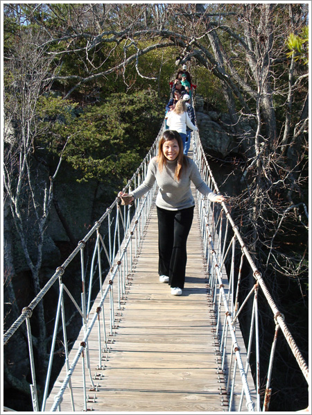 ash_swinging_bridge.jpg
